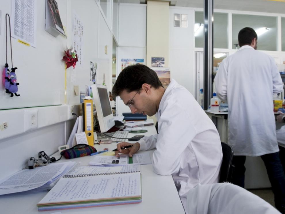 Investigadores de la Universidad de Zaragoza en el campo de la tuberculosis