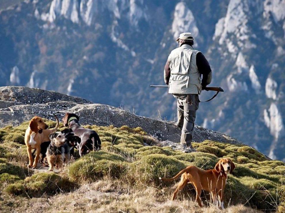 El Anteproyecto endurece las condiciones para la tenencia y el transporte de los perros de caza