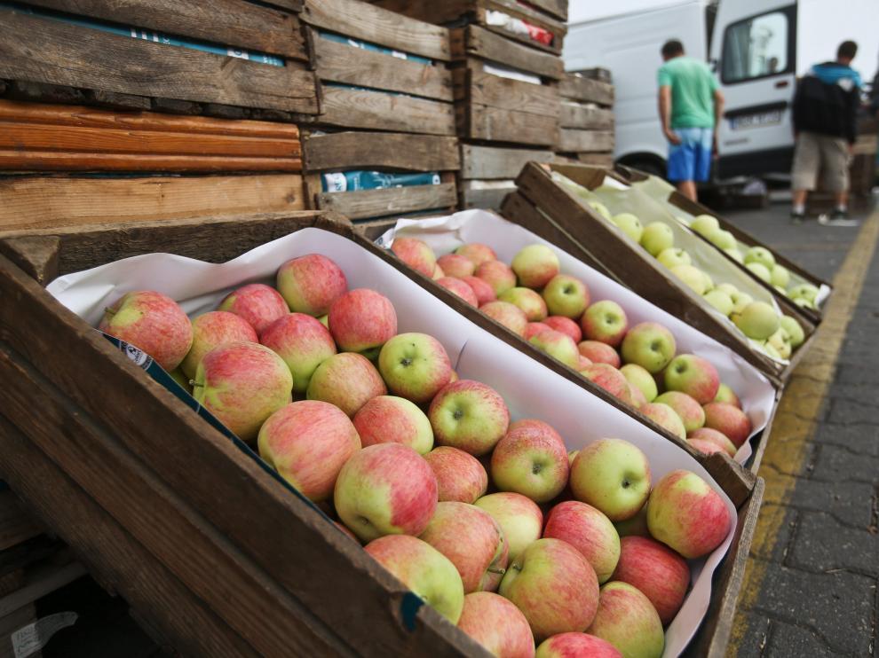 Los productores de fruta en Aragón pierden un 35% de su renta por el veto ruso