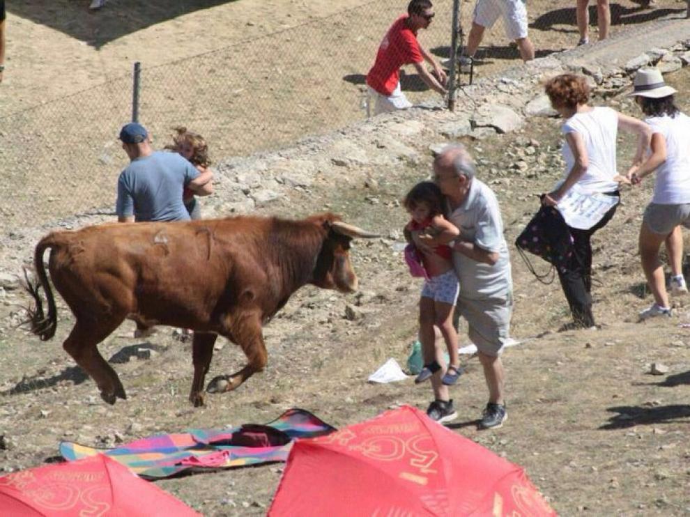 Varios niños y ancianos se vieron sorprendidos por la vaquilla