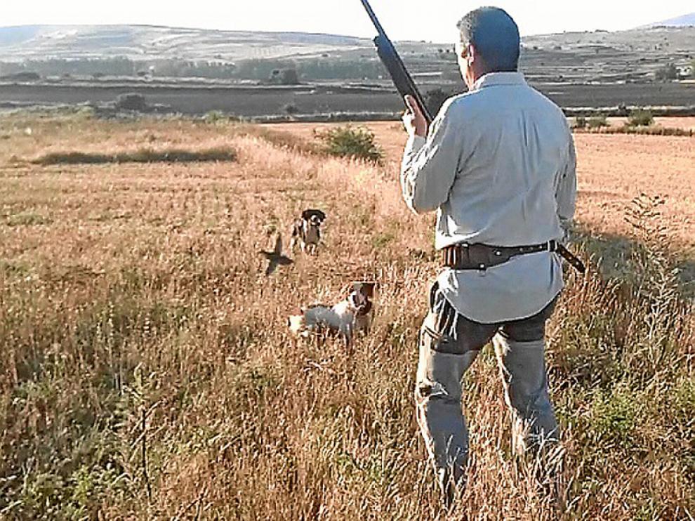 Un cazador en plena actividad