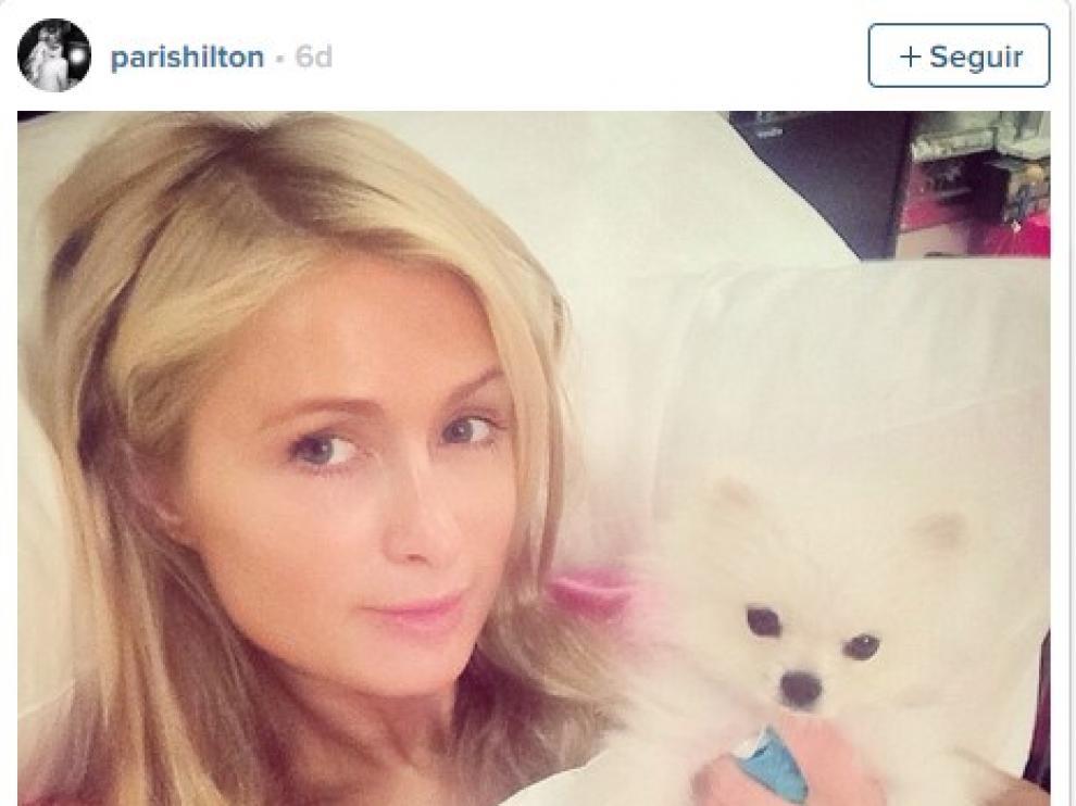Paris Hilton también se unió a la causa solidaria