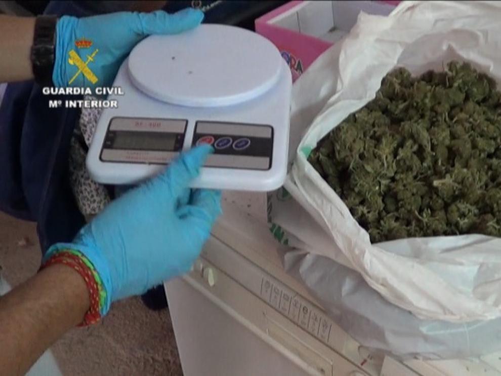 Marihuana incautada por las autoridades
