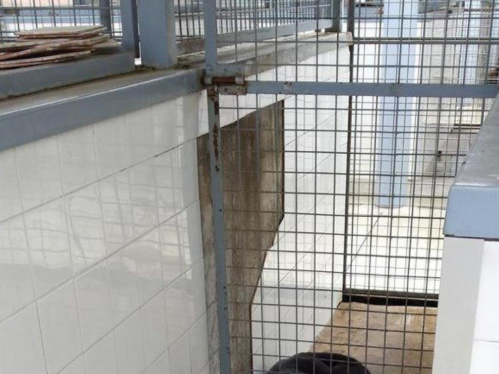Imagen de las perreras de la Unidad de Guías Caninos de Sevilla