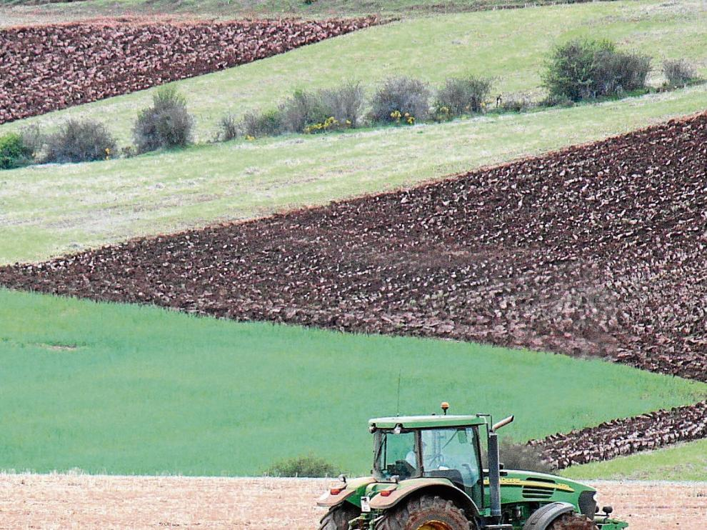 Un agricultor prepara la tierra para la siembra