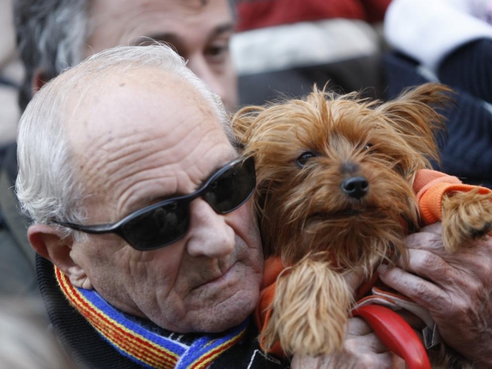 Las mascotas y sus dueños celebran San Antón