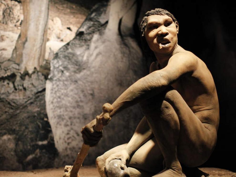 Los humanos de Atapuerca comían perros domésticos, gatos salvajes, zorros y tejones