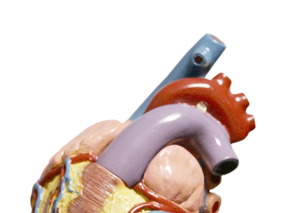 Las dolencias cardiacas son las principales causantes de muertes por enfermedad no transmisible.