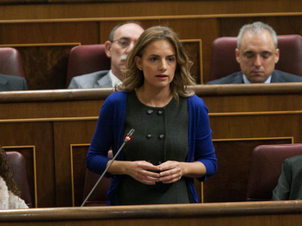 Diputada socialista en el Congreso, Susana Sumelzo