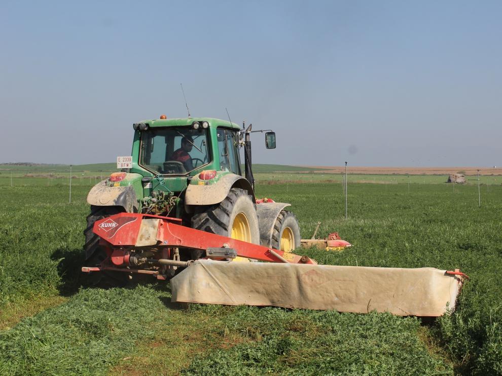 Cosecha de alfalfa.