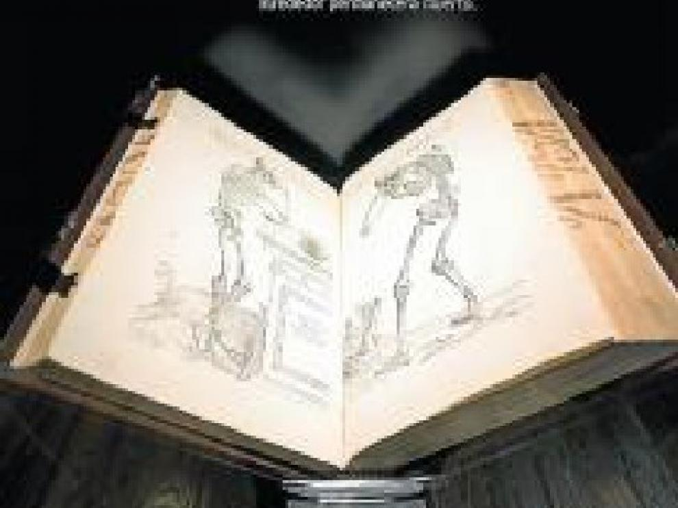 Grabados de una obra de Vesalio