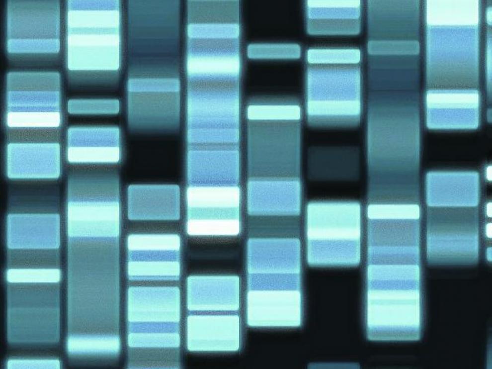 La genética no cuenta toda la historia; de hecho, algunas de sus peculiaridades pueden predisponer a padecer ciertas enfermedades, pero no siempre.