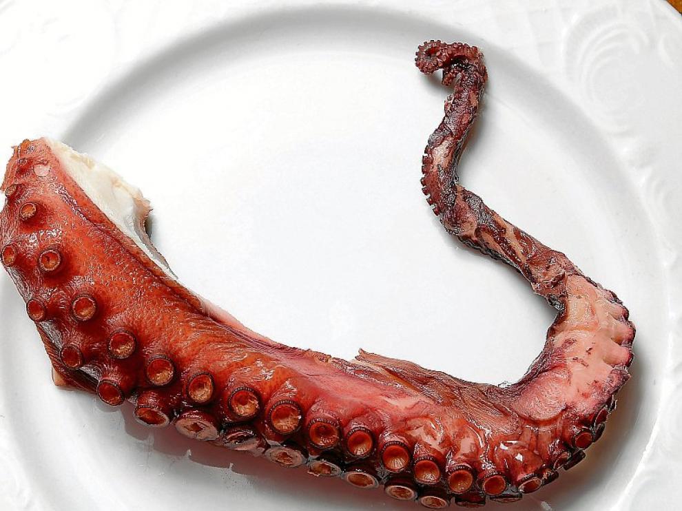 Tentáculo de un pulpo, listo para comer.
