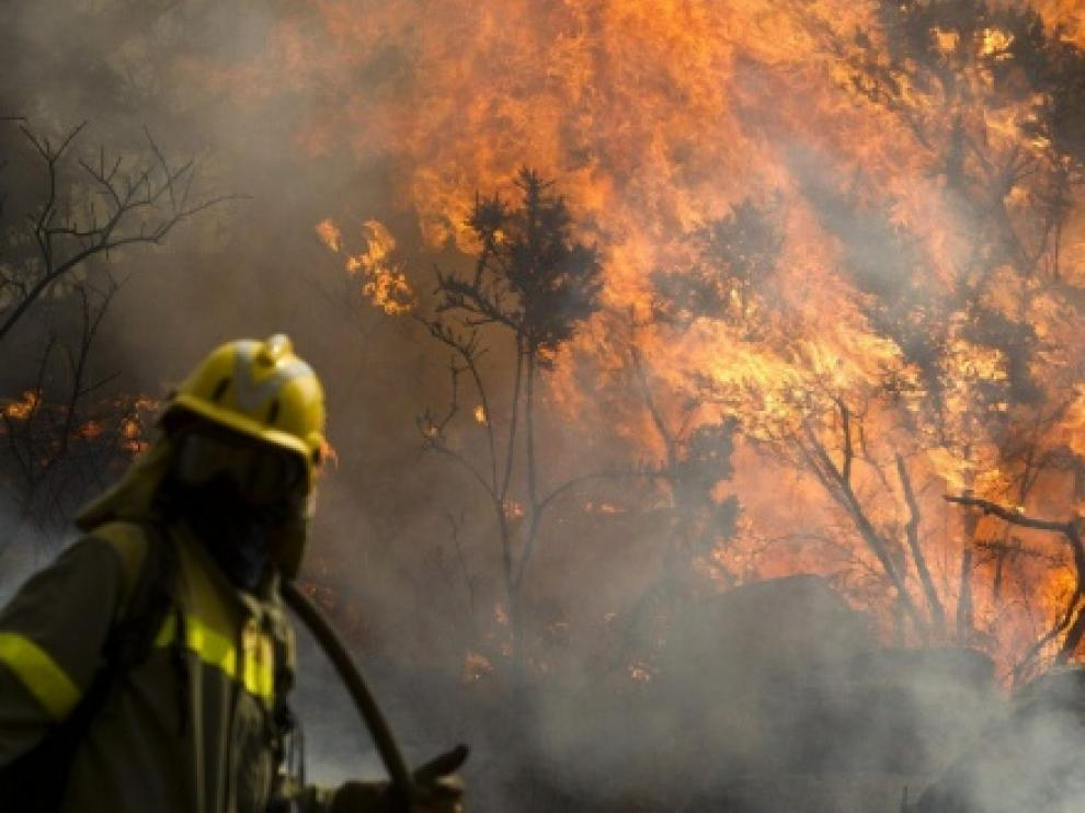 La reforma de la Ley de Montes permitirá construir en terrenos recién quemados