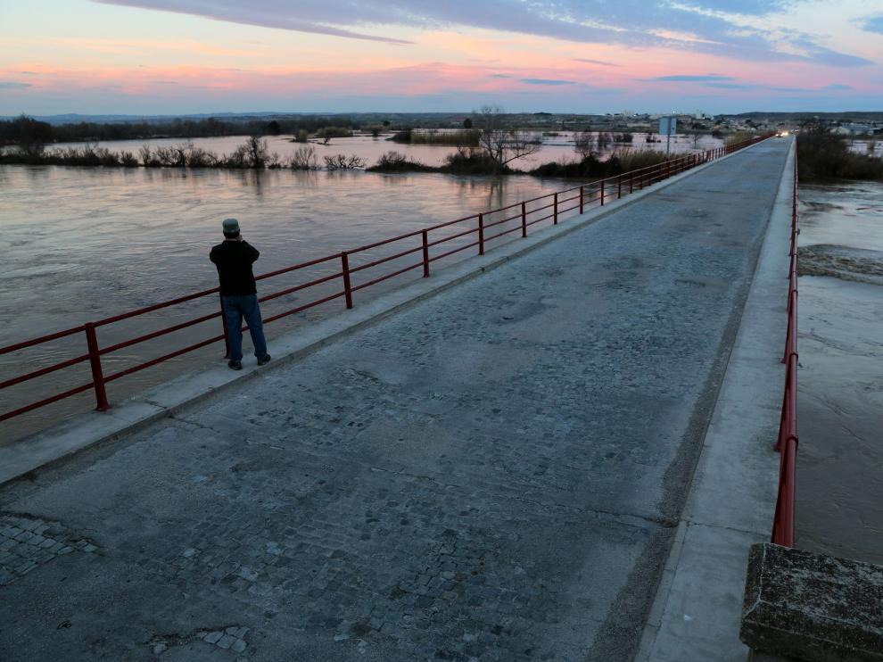 Un hombre mira el río en Quinto de Ebro