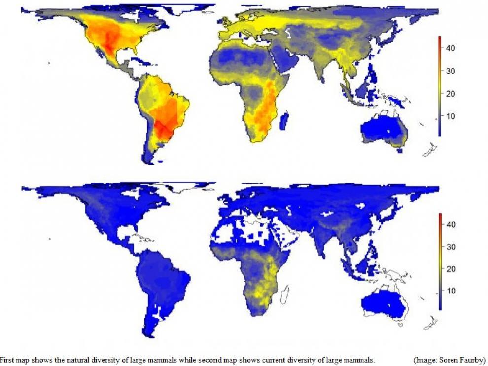 El primer mapa muestra la diversidad natural de los grandes mamíferos mientras que el segundo mapa muestra su diversidad actual.