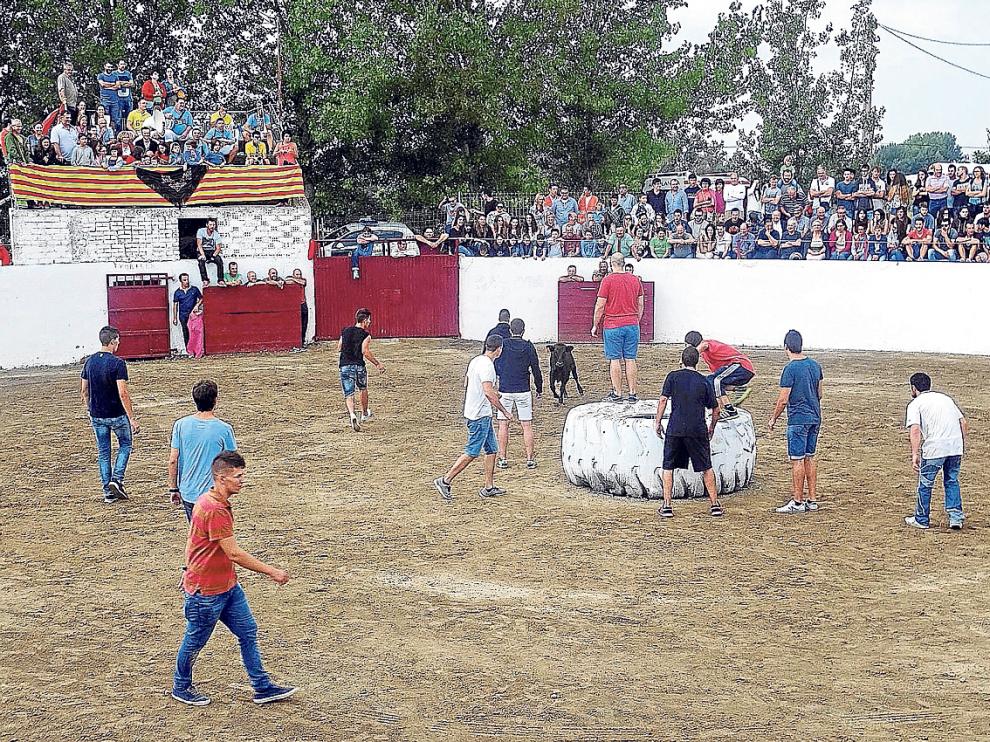 Los altorriconenses lo pasaron ayer en grande en los actos taurinos que se organizaron.