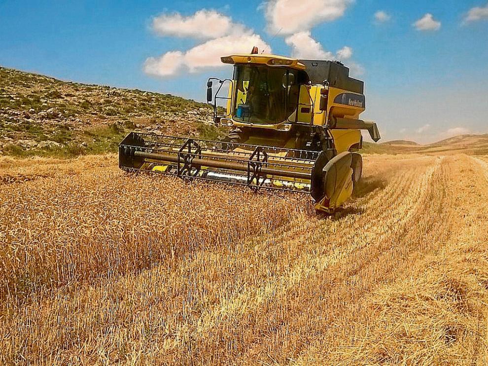 Un agricultor de Galve, ayer en plena cosecha de uno de sus campos.