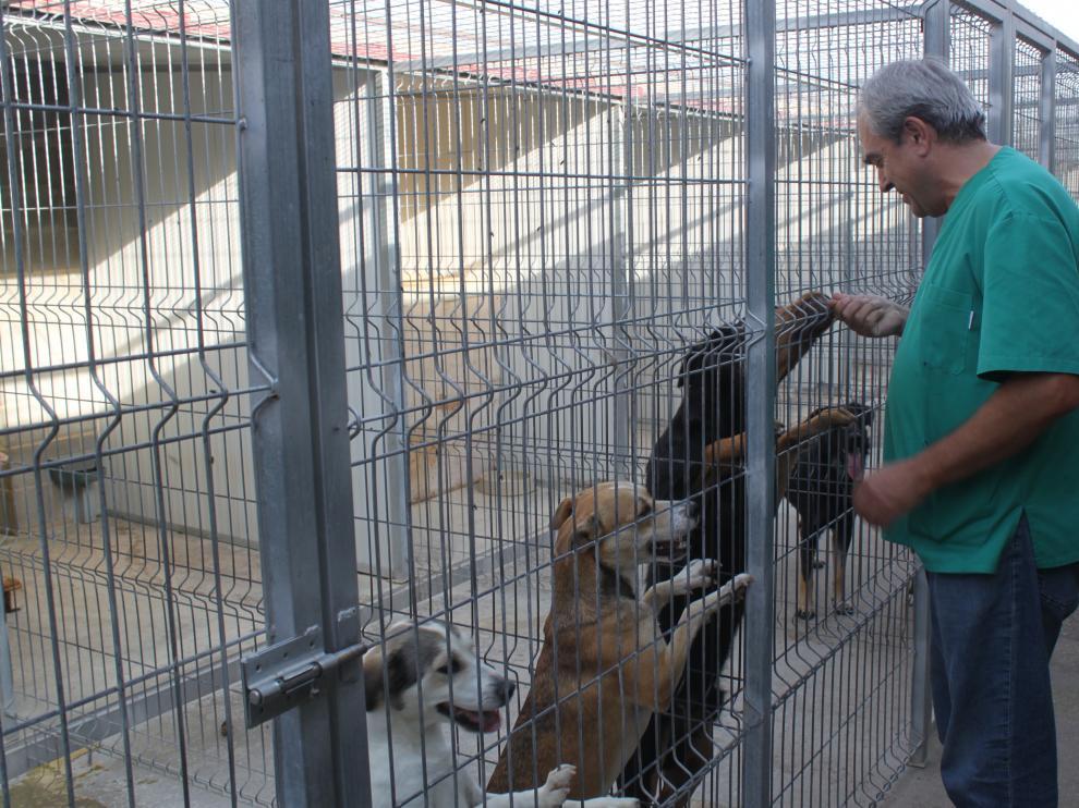 El responsable de la perrera, José Abarca en las instalaciones del centro.