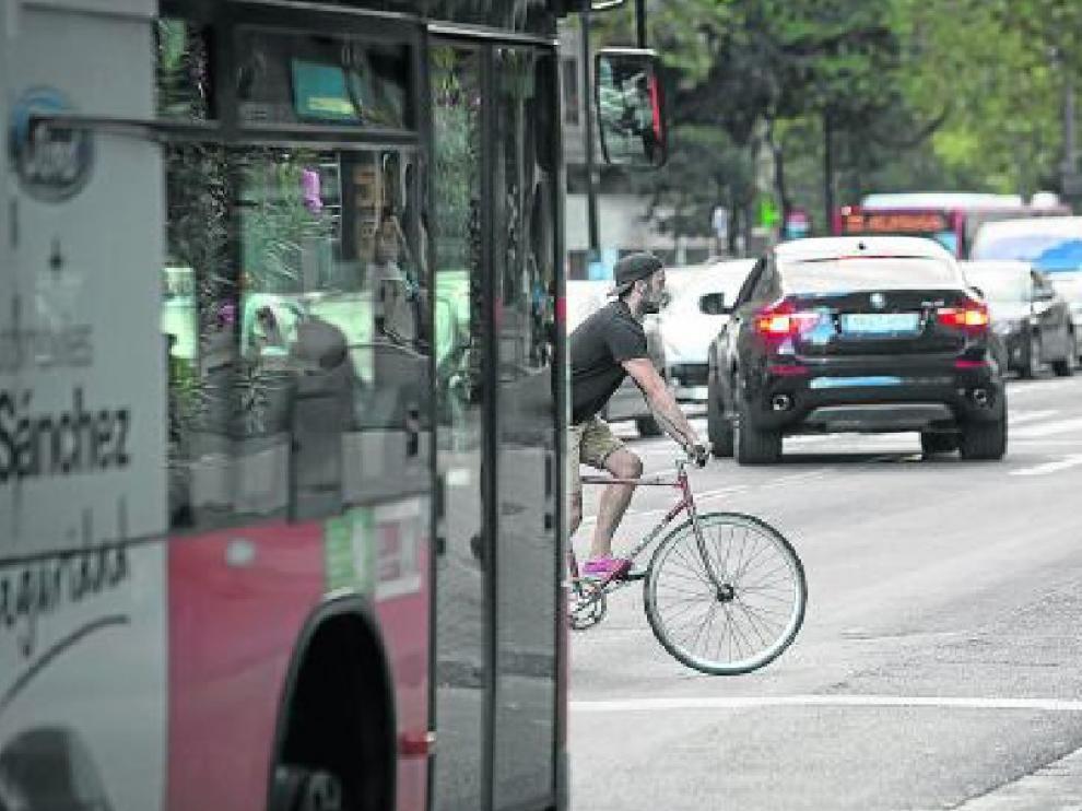 Un ciclista en el Paseo María Agustín, entre coches y autobuses
