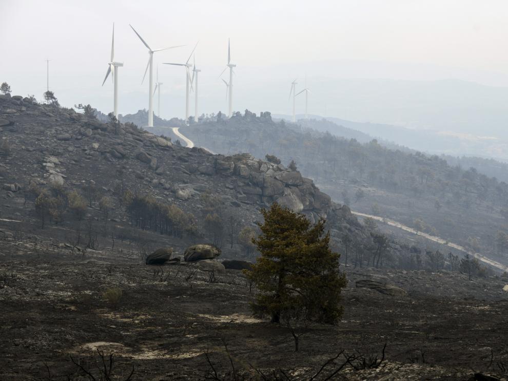 Vista de la superficie calcinada en el incendio forestal iniciado este jueves en Cualedro.