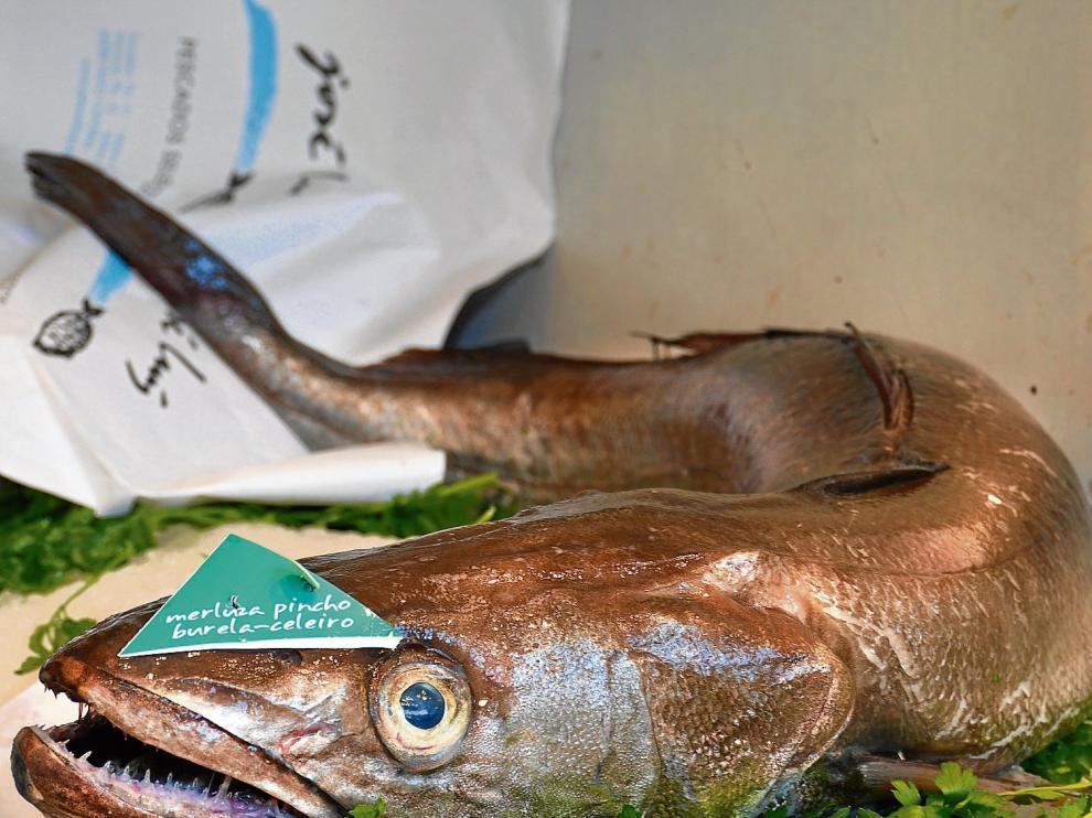 Una merluza de pincho de las que se pueden encontrar en las pescaderías aragonesas, llegadas del puertos del Cantábrico.