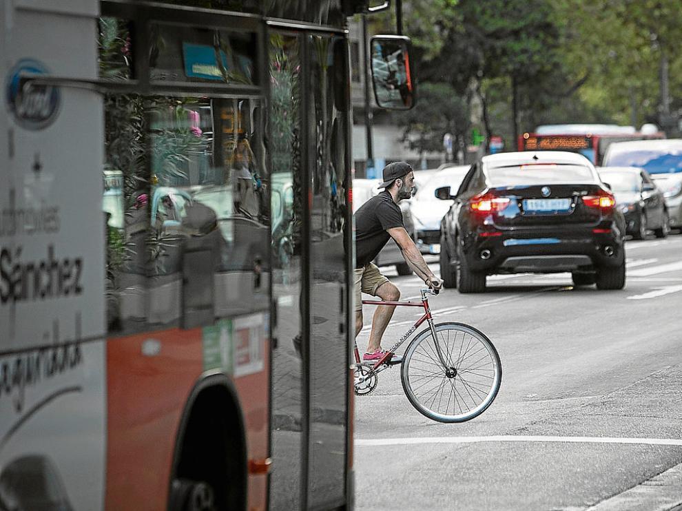 Un ciclista en el paseo de María Agustín, entre coches y autobuses.