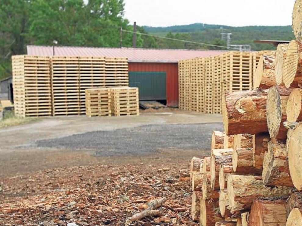 La venta de madera lleva dos años de crecimiento gracias a la biomasa y a la industria del tablero.