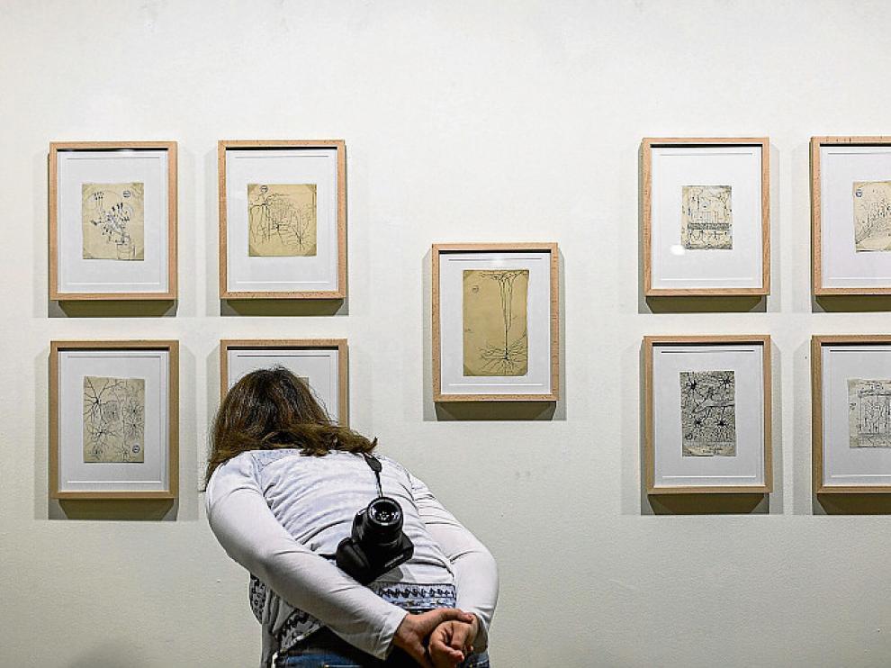 Una joven contempla un mosaico de dibujos de Cajal.