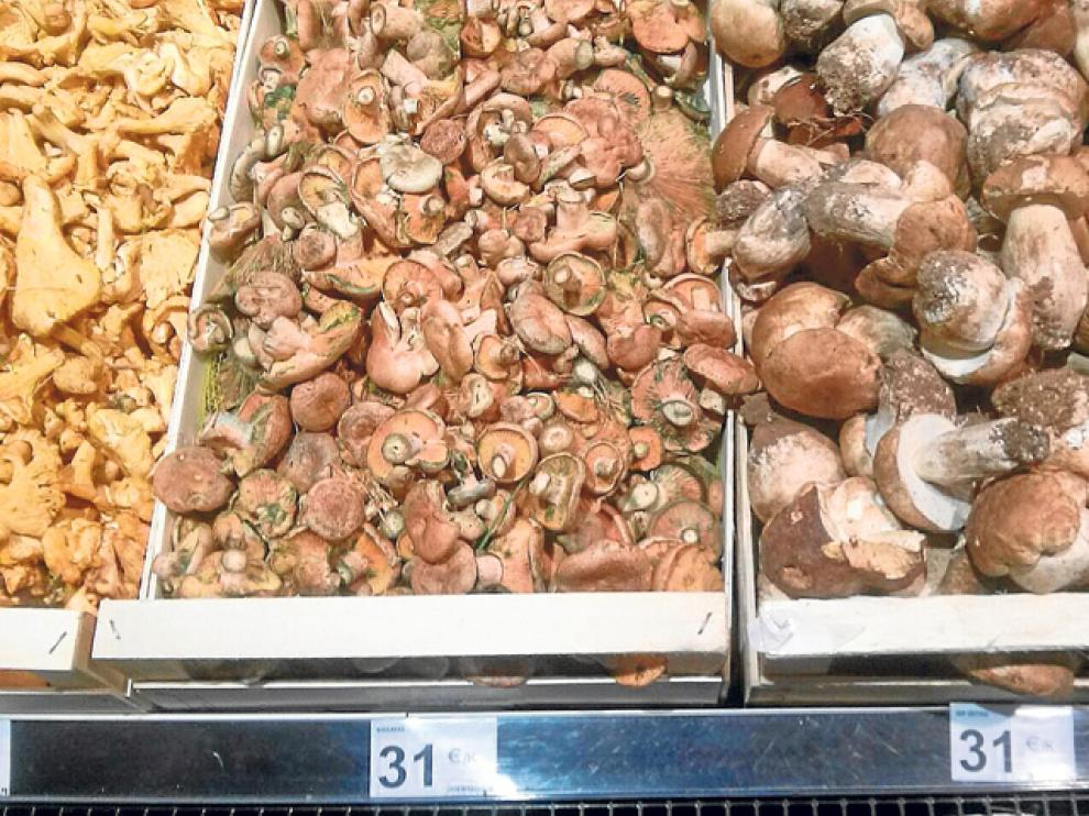 El kilo de boletus o níscalos supera los 31 euros en supermercados de Benidorm.