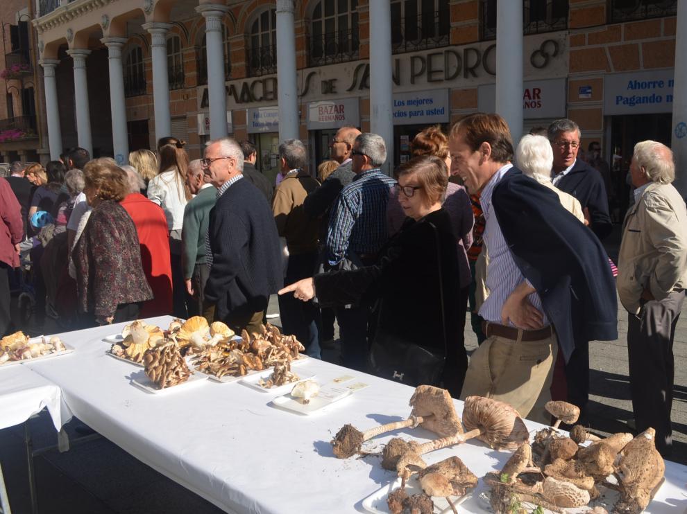 El Centro de Estudios del Somontano celebra la Fiesta de las Setas de Barbastro