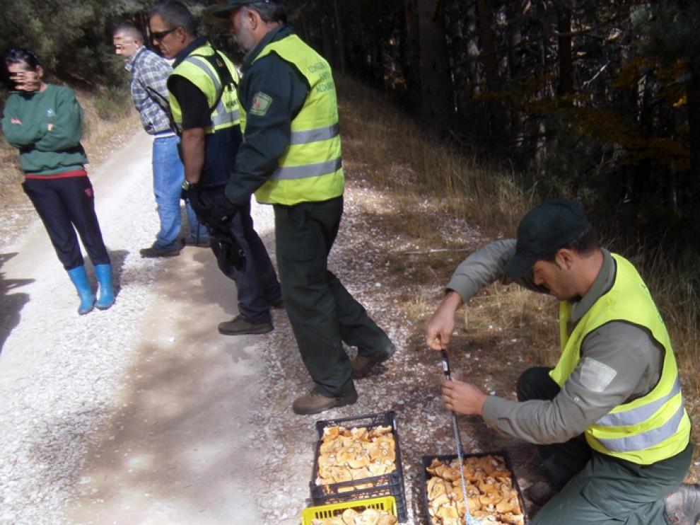Uno de los decomisos realizados el pasado viernes en El Royo