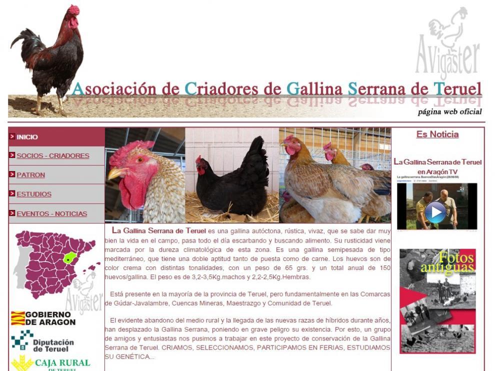 Web de la Asociación de Criadores de Gallina Serrana de Teruel
