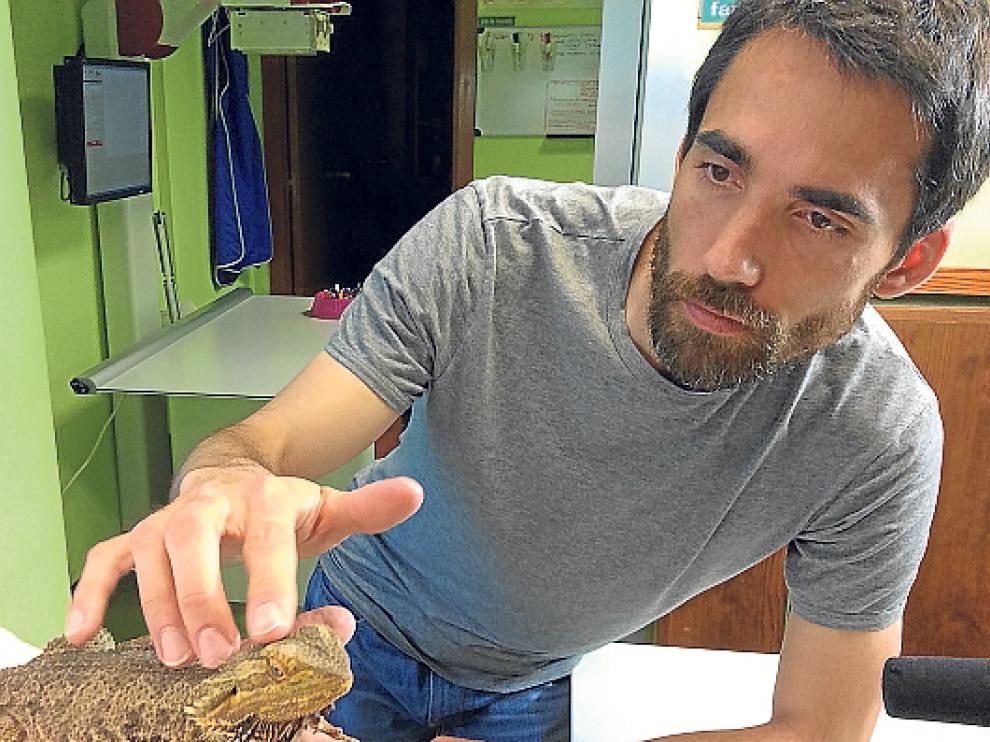 Ciencia para todos los públicos. Los tres finalistas de la categoría Divulgación en Aragón trabajan por acercar la ciencia a los más pequeños, desde las colonias urbanas Etopia Kids; al alumnado de Secundaria, con el proyecto CSI-Zaragoza ; y a la audiencia televisiva de Aragón TV, desde el programa 'En ruta con la ciencia'.