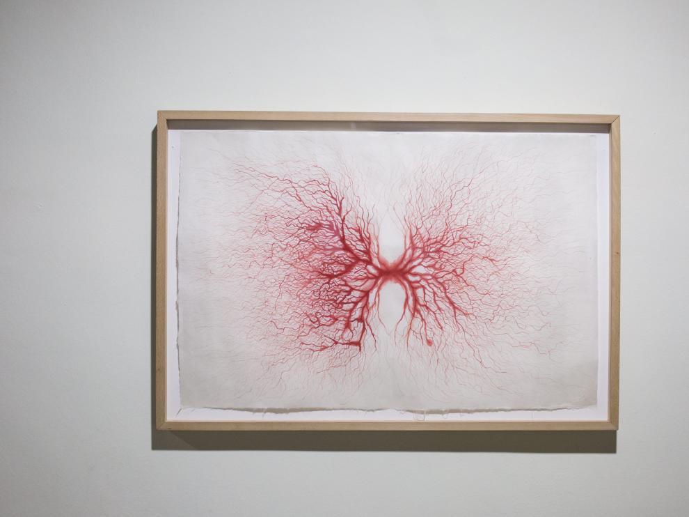 'Capilares rojos' (2001), de Javier Pérez.