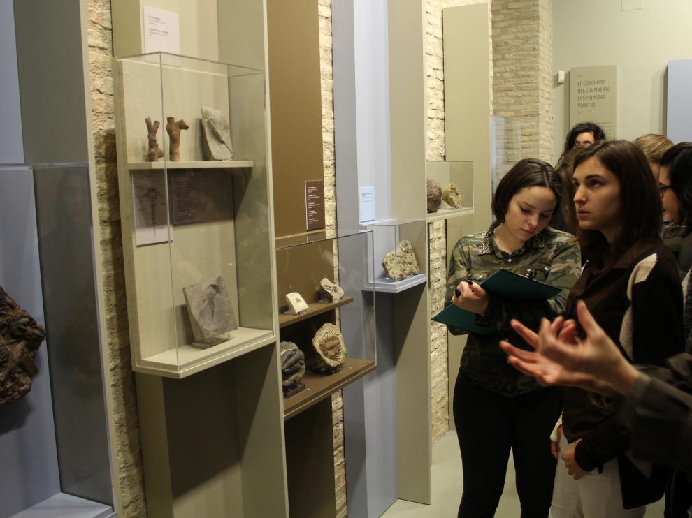 El Museo de Ciencias Naturales recibe unas 4.000 visitas en sus primeros diez días de apertura
