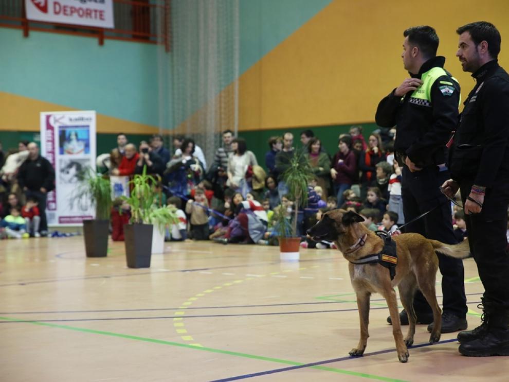 Exhibición de policía canina en Zaragoza