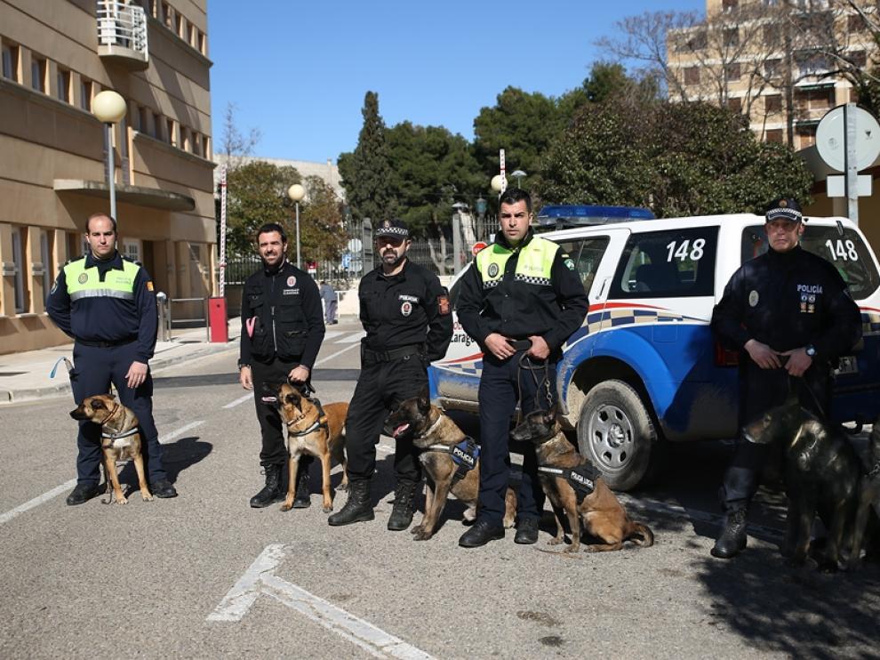 Responsables de unidades caninas muestran en Zaragoza su labor
