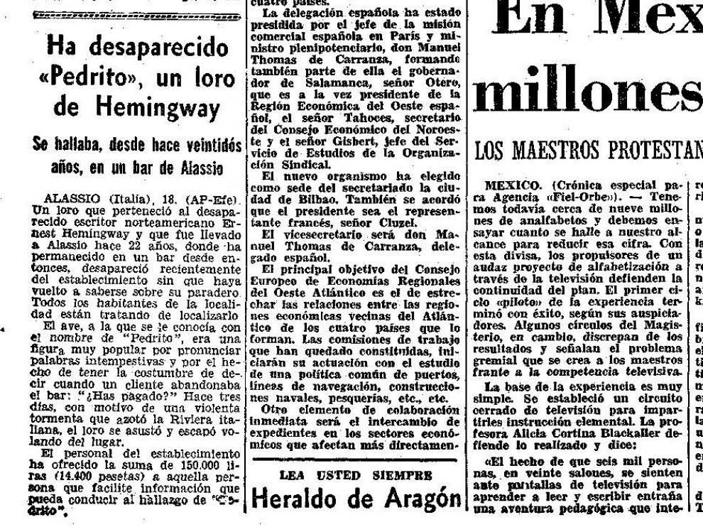 El loro de Hemingway.