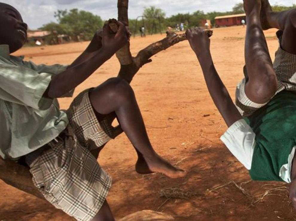 Un grupo de niños juega en unos árboles.