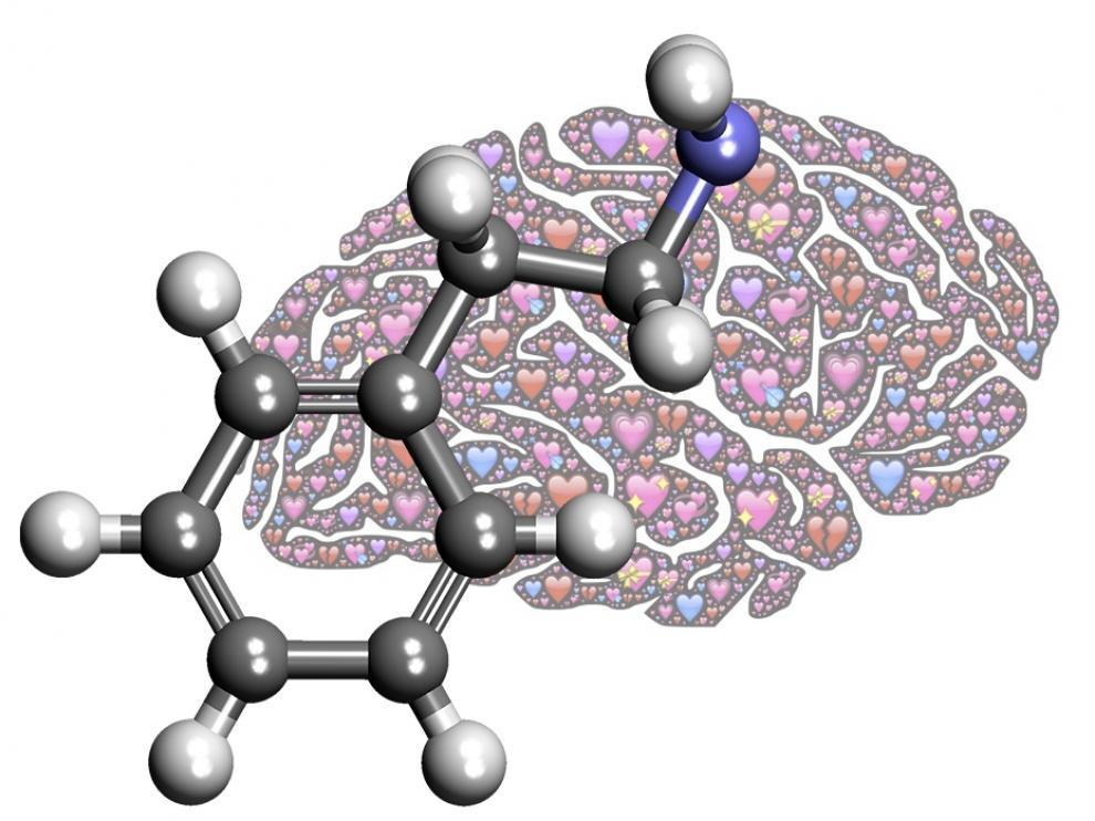 Esta es la molécula enigmática de este mes.