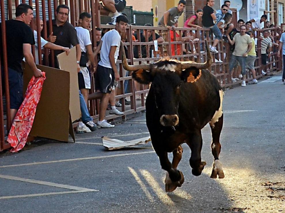 El veto de ZEC a festejos taurinos moviliza a los barrios rurales