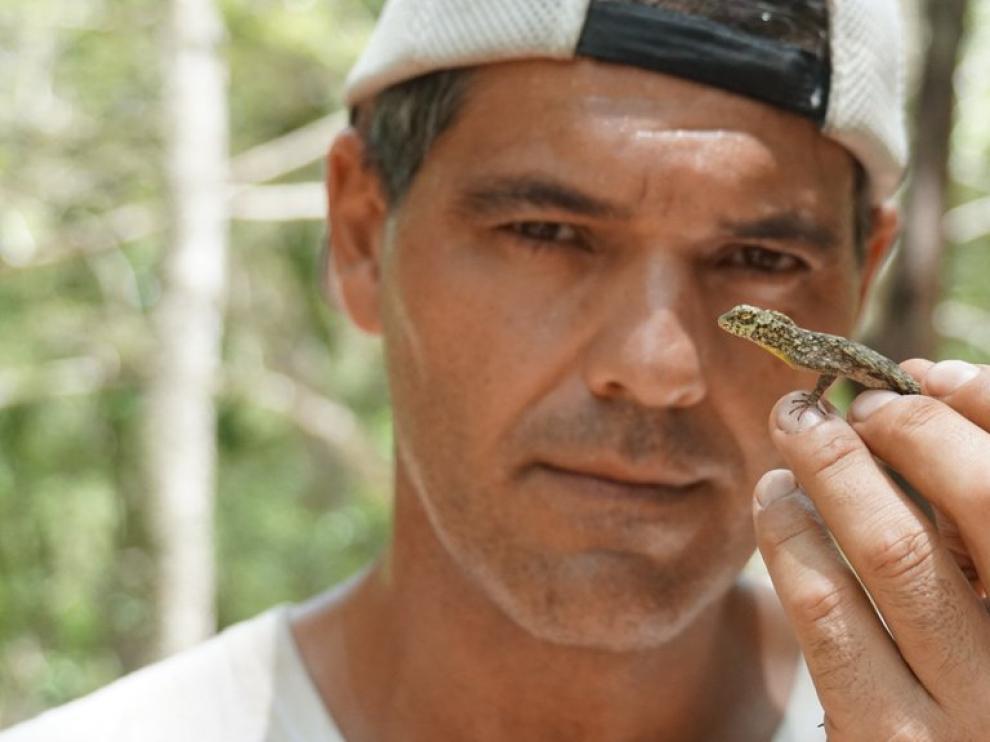 Frank Cuesta, el popular presentador de 'Wild Frank', pondrá voz a uno de los personajes de la nueva película de 'El libro de la selva'.