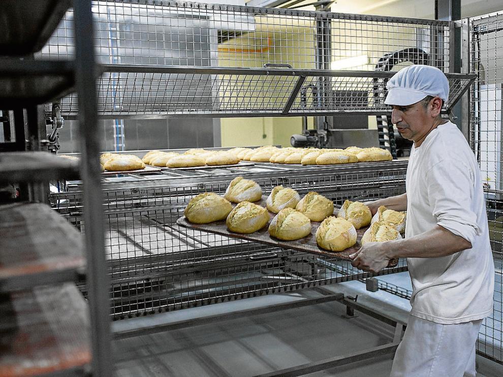 Nuevos hornos para la elaboración de los panes especiales de Panishop.