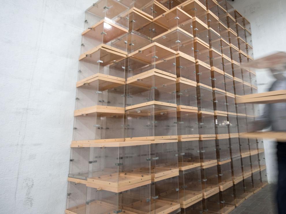 Urnas electorales preparadas para las elecciones del año pasado.