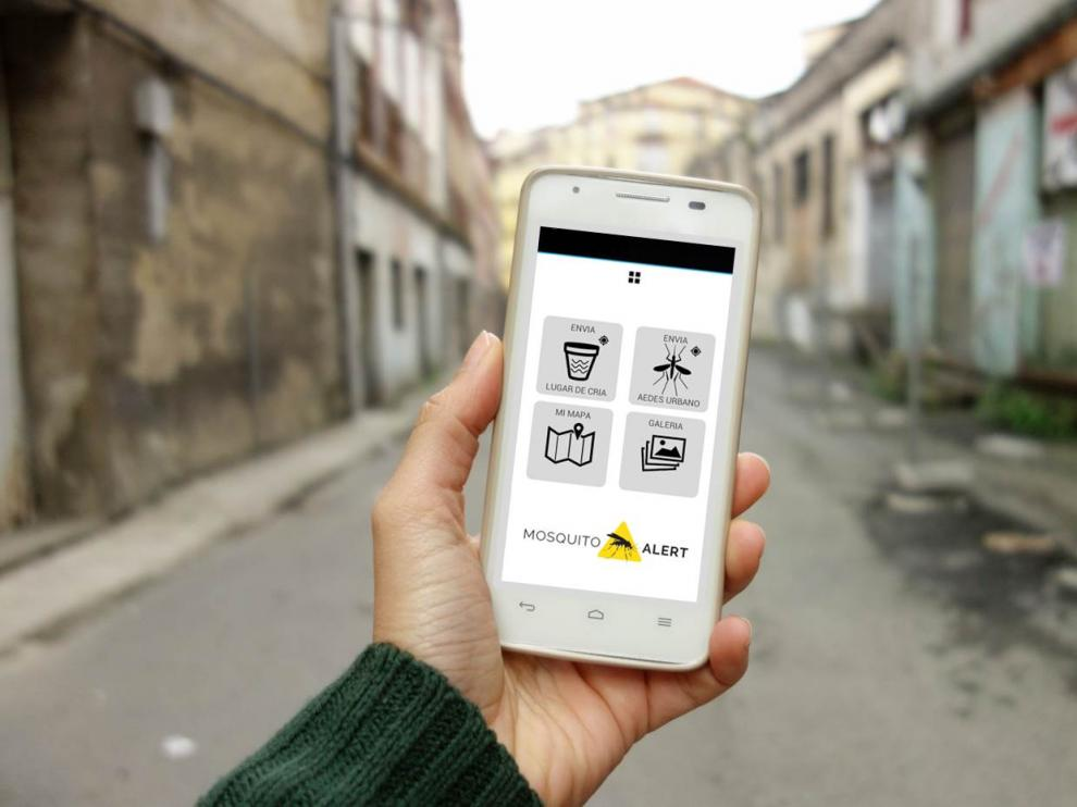 Con la app Mosquito Alert, cualquier persona puede notificar un posible hallazgo de mosquito tigre o de sus lugares de cría enviando una foto.