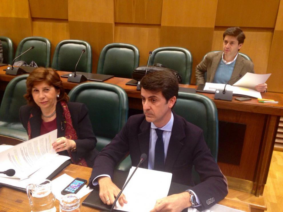 Pedro Navarro (PP) durante la comisión de Urbanismo en el Ayuntamiento de Zaragoza.