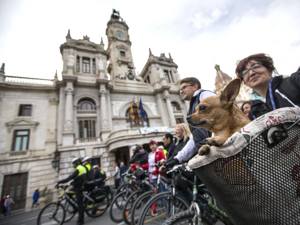 Bicicletación en el centro de valencia con motivo del Día Mundial de la bicicleta