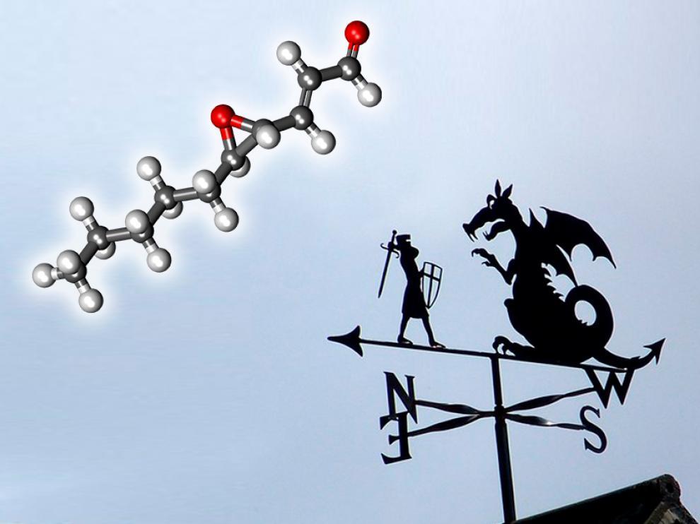 Esta vez, nuestra @moleculica enlaza su historia con la de San Jorge y el dragón y va dejando un rastro de pistas.