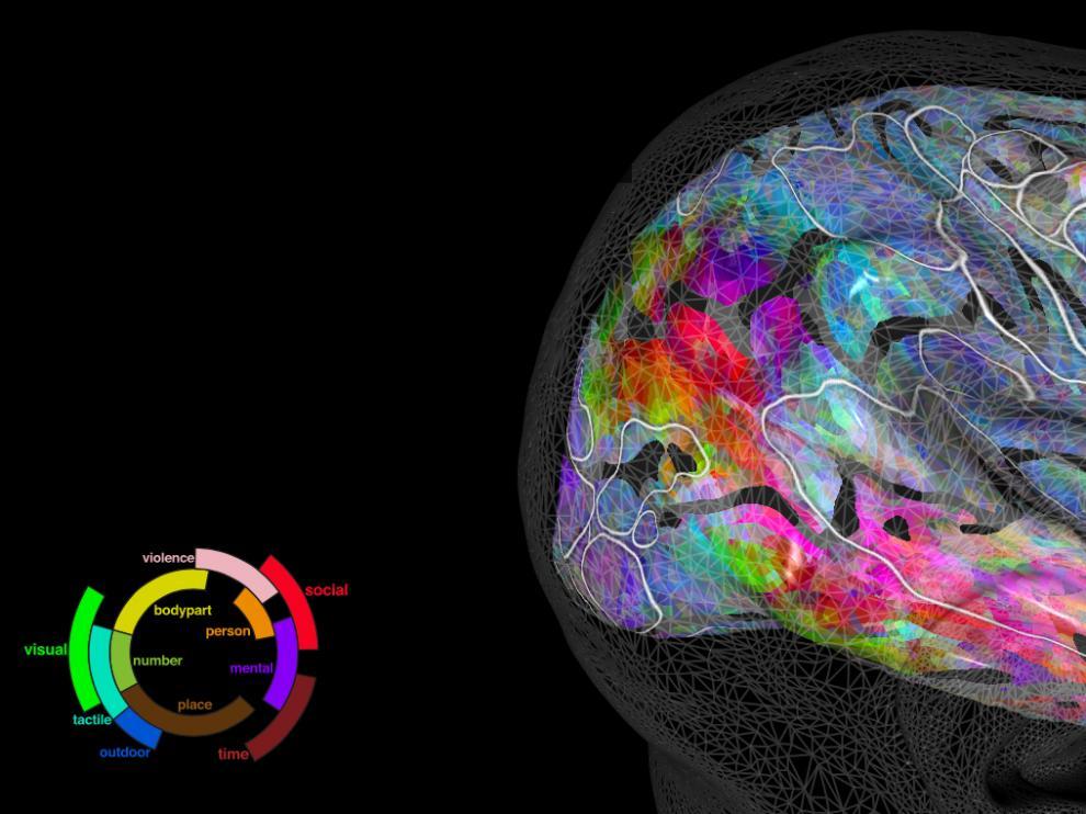 PrAGMATiC predice cómo va a reaccionar el cerebro de una persona al escuchar una palabra determinada.
